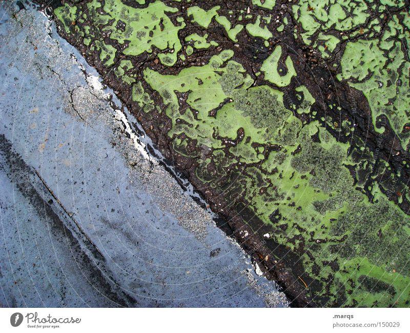 Weathered grün blau quer Linie Strukturen & Formen Muster Streifen Asphalt Straße Verkehrswege Bodenbelag verfallen