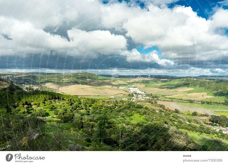 Natürliches Mosaik Freiheit Natur Landschaft Pflanze Himmel Wolken Herbst Wind Hügel Dorf bevölkert drehen blau braun grün Windkraftanlage Feld Wald Farbfoto