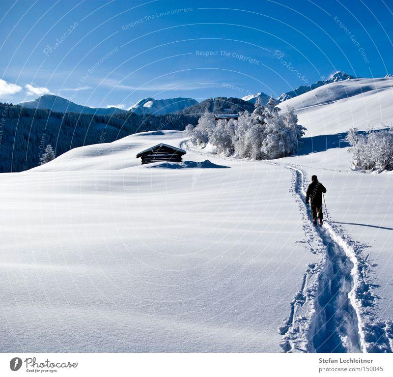 Auf zum Atem! Natur Baum Landschaft Winter Berge u. Gebirge Schnee Park wandern Idylle Show Dorf Österreich Schneelandschaft aufsteigen unberührt Bundesland Tirol