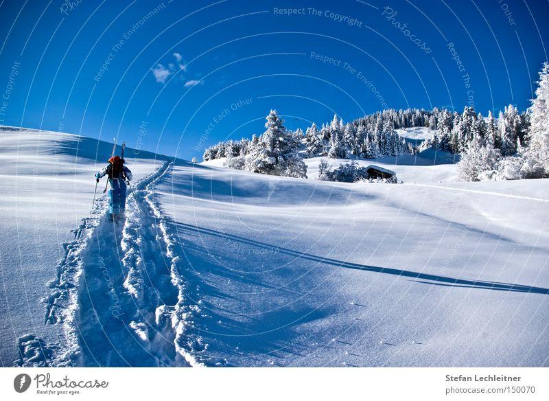 Aufstieg zum Gipfel Österreich Winter Berge u. Gebirge Schneelandschaft Bundesland Tirol Tiefschnee Winterwald Dorf serfaus Skiort Winterdorf unberührt Natur