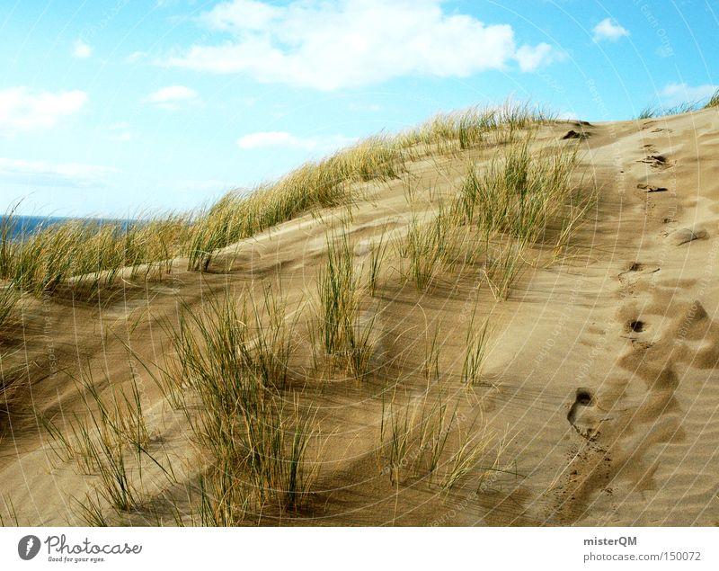 """""""200"""" Sommer, Sonne, Sonnenschein Natur Himmel Meer Strand Ferien & Urlaub & Reisen Erholung Wege & Pfade Küste Wetter Erfolg entdecken Stranddüne Düne Ostsee"""