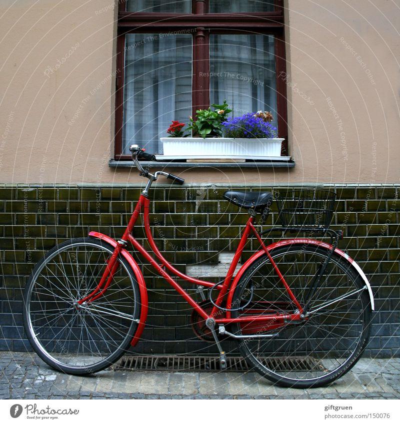 abgestellt Fahrrad parken Parkplatz Fenster Blume Blumenkasten Hausmauer Straße Detailaufnahme Verkehr anlehnen parterre erdgeschoß