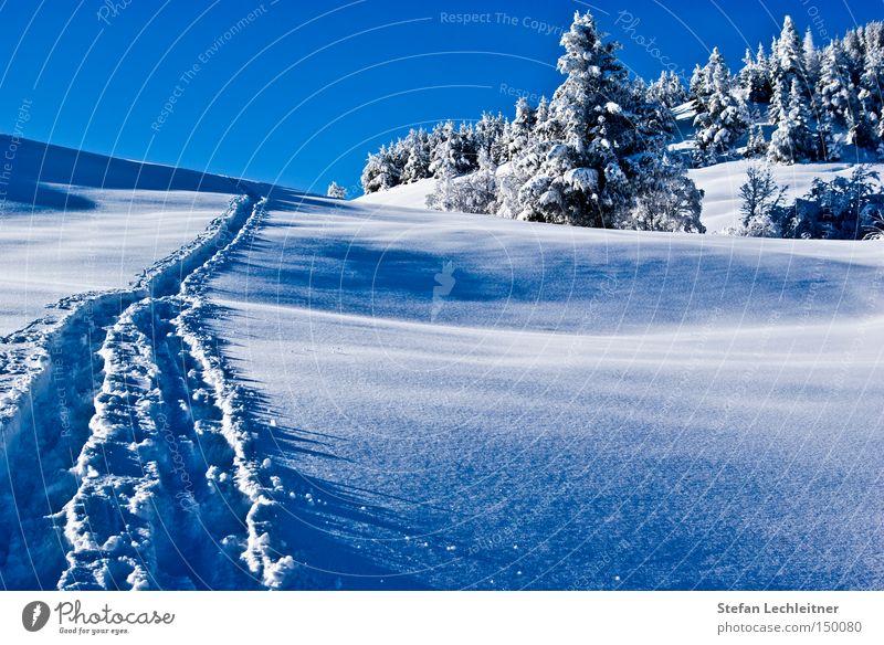 Spuren im Schnee Österreich Winter Berge u. Gebirge Schneelandschaft Bundesland Tirol Tiefschnee Winterwald Schneespur serfaus Skiort Winterdorf unberührt Natur