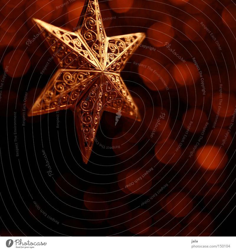 One*Star*Story Zufriedenheit Winter Dekoration & Verzierung Lampe Weihnachten & Advent Gold glänzend rot Hintergrundbild Dezember Beleuchtung Stern (Symbol)