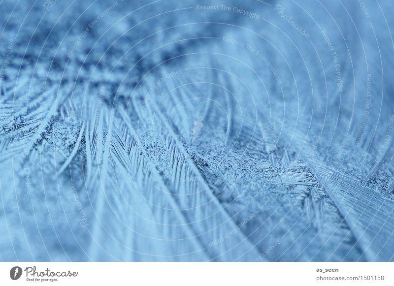 Eisnadeln Natur Weihnachten & Advent blau Farbe Wasser ruhig Winter Fenster kalt Umwelt Gefühle Kunst glänzend Eis ästhetisch Klima