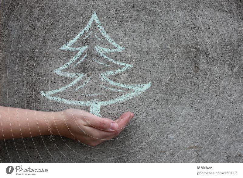 VorFreude Weihnachten & Advent Hand Nadelbaum Wand Feste & Feiern Weihnachtsdekoration Mensch Geschenk Weihnachtsbaum Tanne Veranstaltung Baum Kreide geben