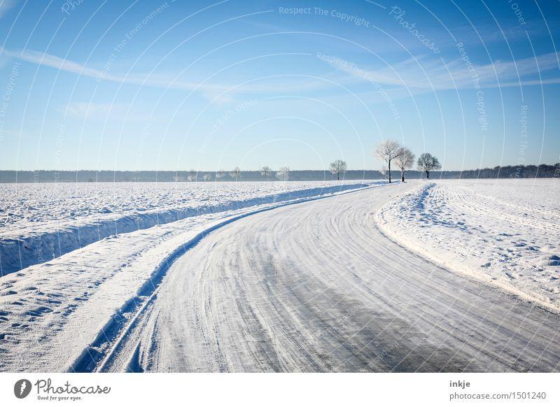 zu Fuß gehts weiter Umwelt Natur Landschaft Urelemente Himmel Wolkenloser Himmel Winter Klima Schönes Wetter Eis Frost Schnee Baum Feld Feldrand Verkehr