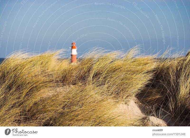 Düne in Warnemünde an der Ostseeküste Erholung Ferien & Urlaub & Reisen Strand Meer Natur Landschaft Wolken Wind Sturm Küste Leuchtturm blau gelb rot Tourismus
