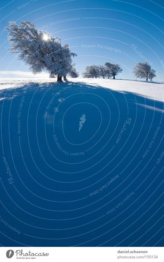 neue Wheinachtskarte 15 Sonnenuntergang Winter Schnee Schwarzwald weiß Tiefschnee Baum Schneelandschaft blau Himmel