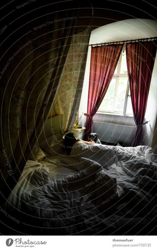 Die Schöne und das Biest Frau schön Hund Fenster träumen Romantik Bett Burg oder Schloss gebraucht