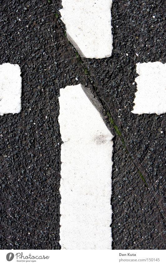 Kreuzschnitt Asphalt Straße Leben Trennung Buchstaben Linie Streifen rau Schriftzeichen Verkehrswege Moral Rücken Tod Haarschnitt Bodenbelag
