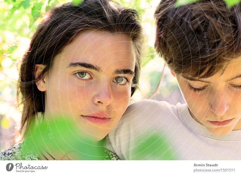 Gemeinsam Mensch Frau Natur Jugendliche Mann schön Junge Frau Baum Erholung Junger Mann Blatt ruhig Erwachsene Traurigkeit Gefühle Familie & Verwandtschaft