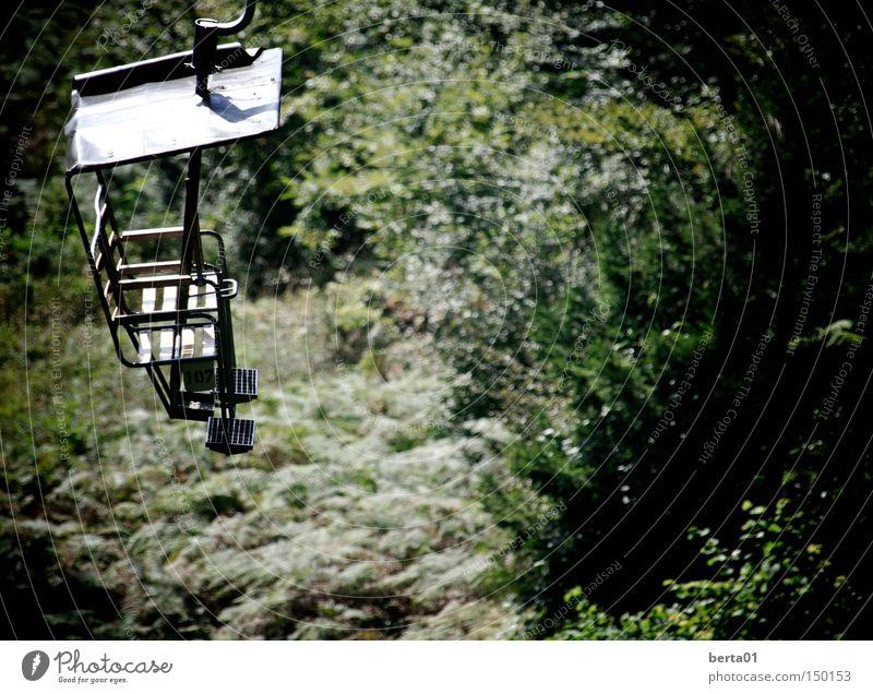 Am Seil grün Wald Wärme Herbst hoch Farn Seilbahn Sesselbahn