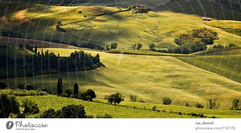 Nice View Natur grün Baum Pflanze Sommer Erholung Ferne Umwelt Landschaft Wiese Wärme Gras Frühling Freiheit Feld groß