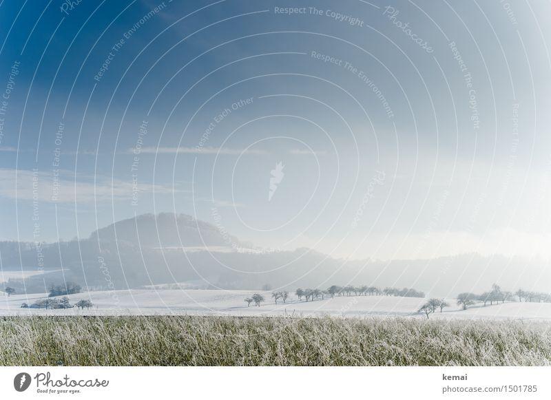 Zurück: der Winter Ausflug Abenteuer Ferne Freiheit wandern Umwelt Natur Landschaft Himmel Wolken Sonne Sonnenlicht Schönes Wetter Nebel Eis Frost Schnee Baum