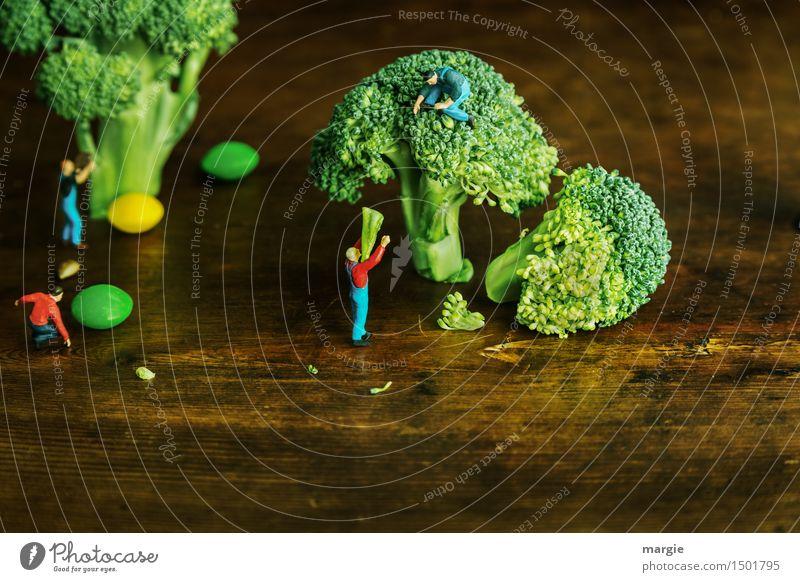Miniwelten - Brokkoli Ernte Mensch Natur Mann grün Baum Gesunde Ernährung Erwachsene Holz Lebensmittel braun Arbeit & Erwerbstätigkeit Frucht maskulin