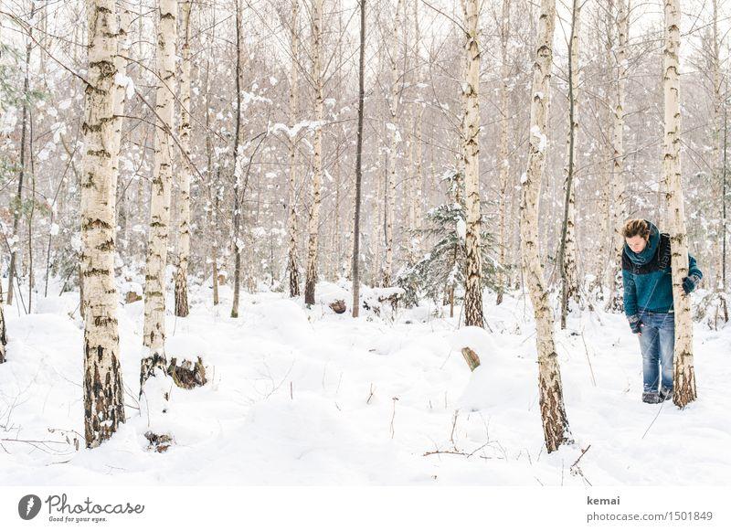 Spending my time with trees (I) Lifestyle Abenteuer Mensch feminin Frau Erwachsene Leben 1 30-45 Jahre Umwelt Natur Winter Schnee Baum Birke Birkenwald