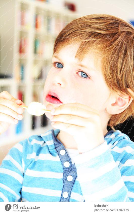 süß | oder sauer?! Mensch Kind blau schön Hand Gesicht Auge kalt Essen Junge Familie & Verwandtschaft Haare & Frisuren Kopf Kindheit Haut genießen