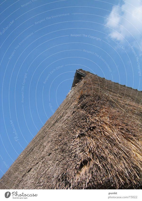 Strohdach Architektur Dach Blauer Himmel Dachgiebel