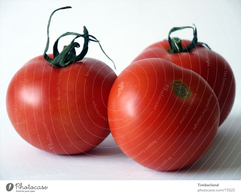 Tomaten weiß rot Ernährung 3 Gemüse Tomate Vor hellem Hintergrund