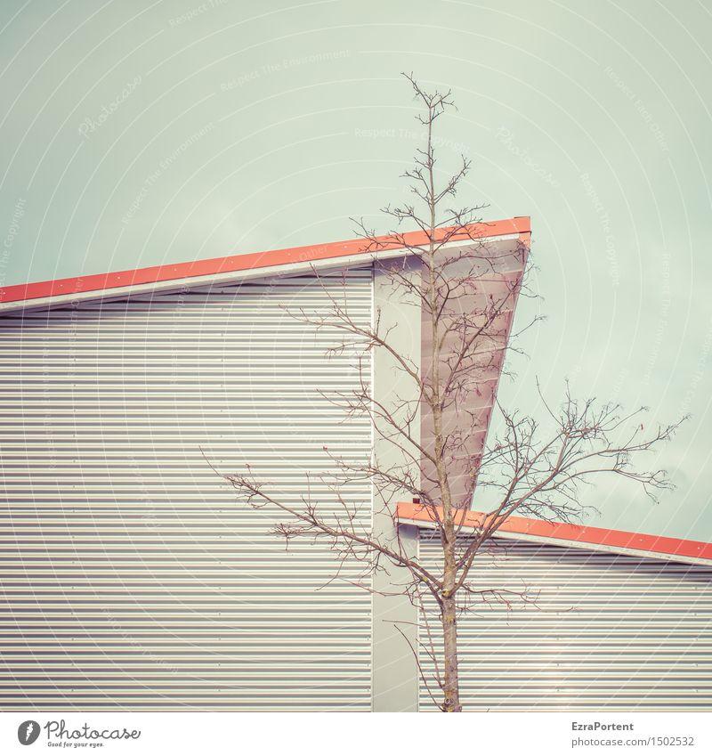 . Himmel Baum Haus Bauwerk Gebäude Architektur Fassade Dach Holz Metall Stahl Linie Streifen kalt nackt blau grau rot Design Gegenteil Grafische Darstellung