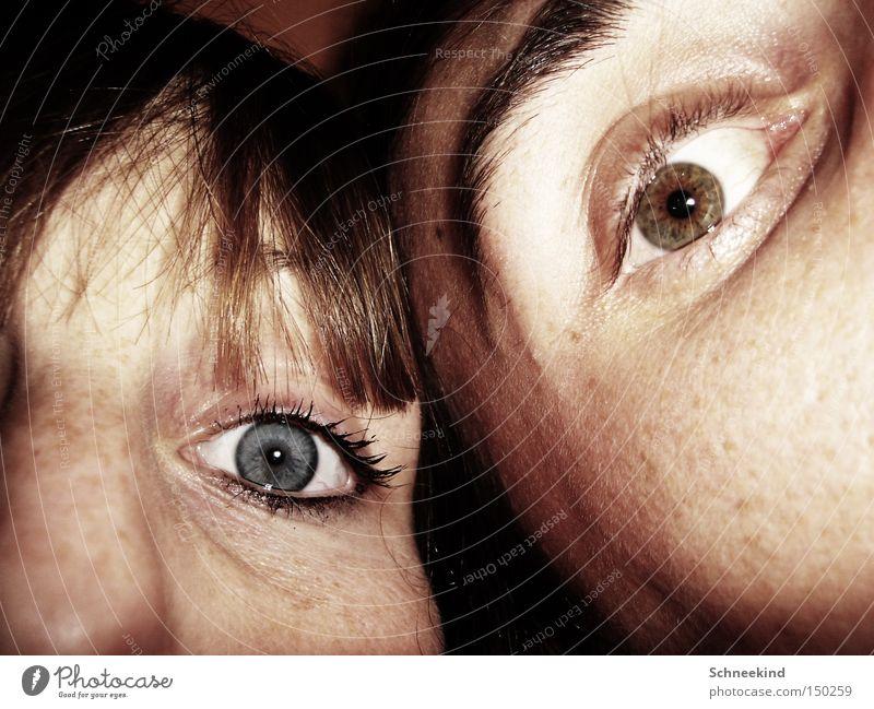 Auge um Auge Frau Mann blau Freude Gesicht Auge Paar braun Vertrauen Hälfte Wimpern Augenbraue