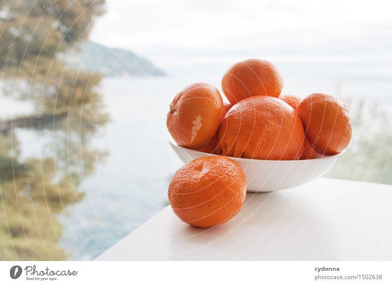 Obsttag Ferien & Urlaub & Reisen Gesunde Ernährung Meer Foodfotografie Gesundheit Lebensmittel Frucht frisch Orange Aussicht Tisch Lebensfreude Italien