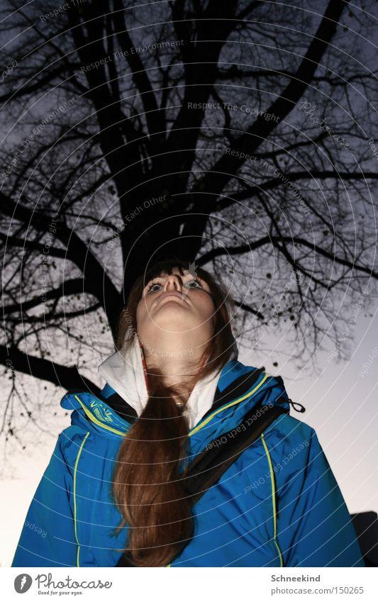 Naturdame Frau Himmel Baum Winter Gesicht Haare & Frisuren Spaziergang Ast Aussicht Frieden Jacke