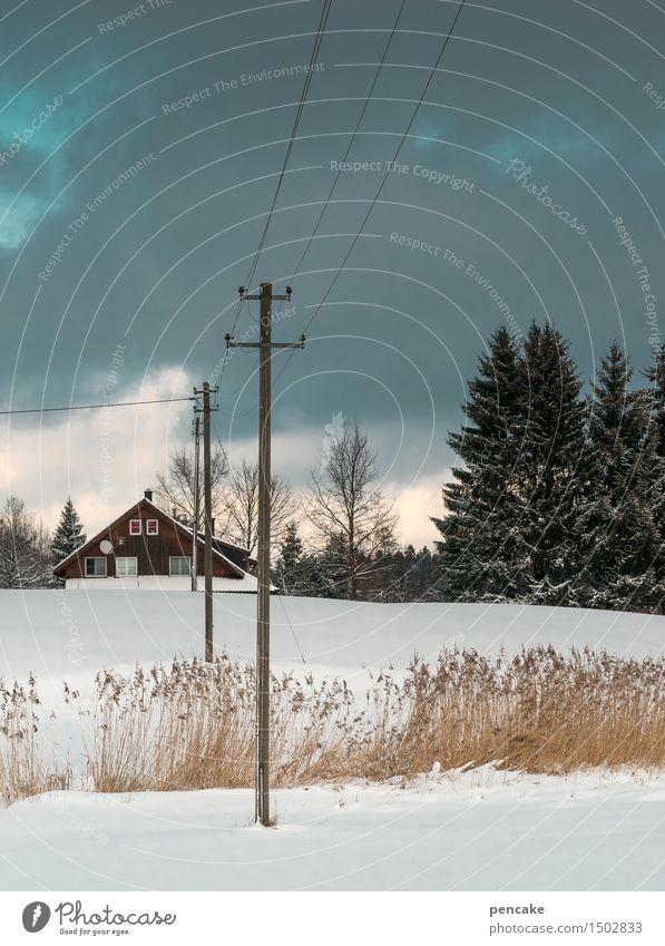 nordisch talking Himmel Natur Ferien & Urlaub & Reisen Landschaft Wolken Winter Wald Wärme sprechen Schnee natürlich feminin Horizont Eis frei Idylle