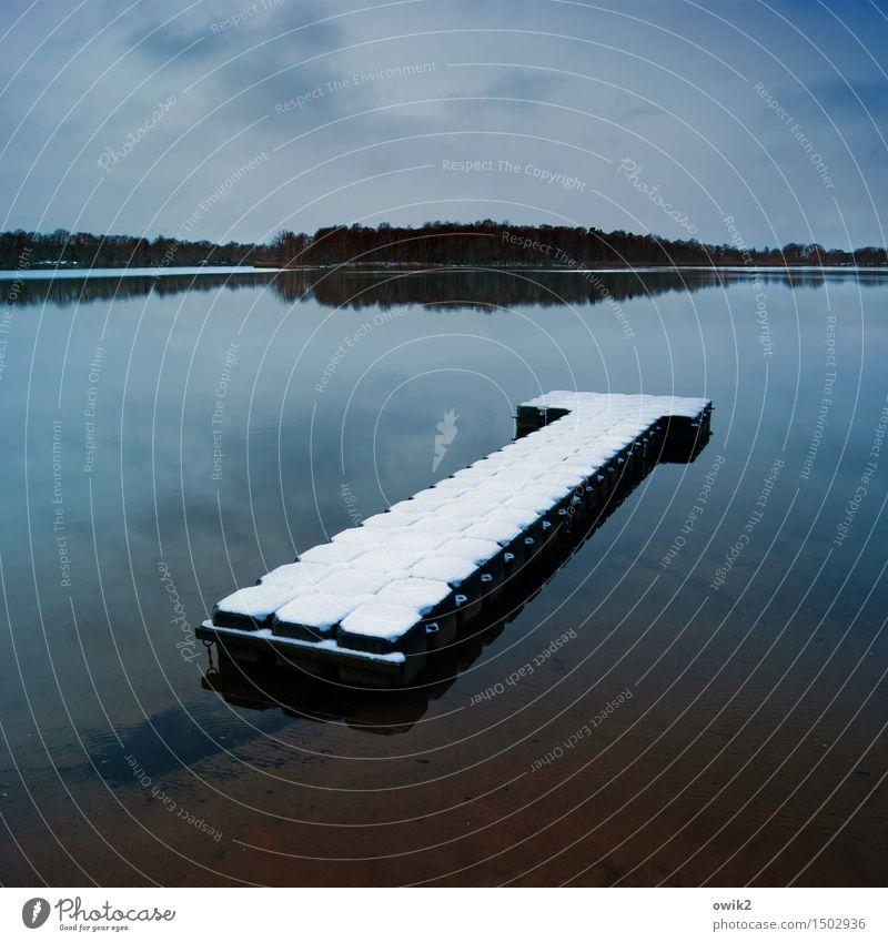 Wasserbett Umwelt Natur Landschaft Himmel Wolken Horizont Winter Klima Schönes Wetter Schnee Wald See Olba Lausitz Deutschland Sachsen Anlegestelle Steg liegen