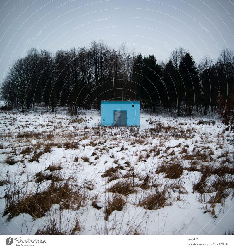 Kleines Blaues Technik & Technologie Zweckbau Wasserwirtschaft Umwelt Natur Landschaft Pflanze Himmel Wolken Horizont Winter Klima Schönes Wetter Eis Frost