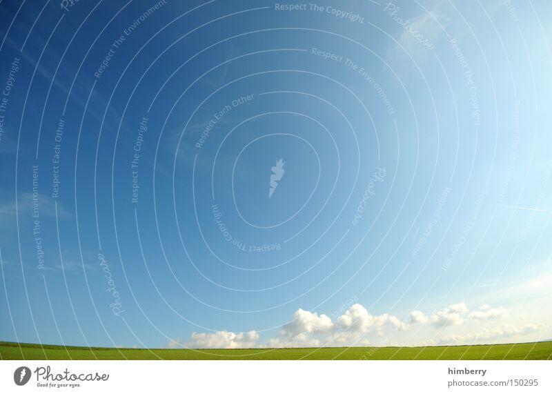 widescreen Himmel Sommer Ferien & Urlaub & Reisen Wolken Erholung Wiese Freiheit Landschaft Deutschland Hintergrundbild Wetter groß Landwirtschaft Weide Ebene