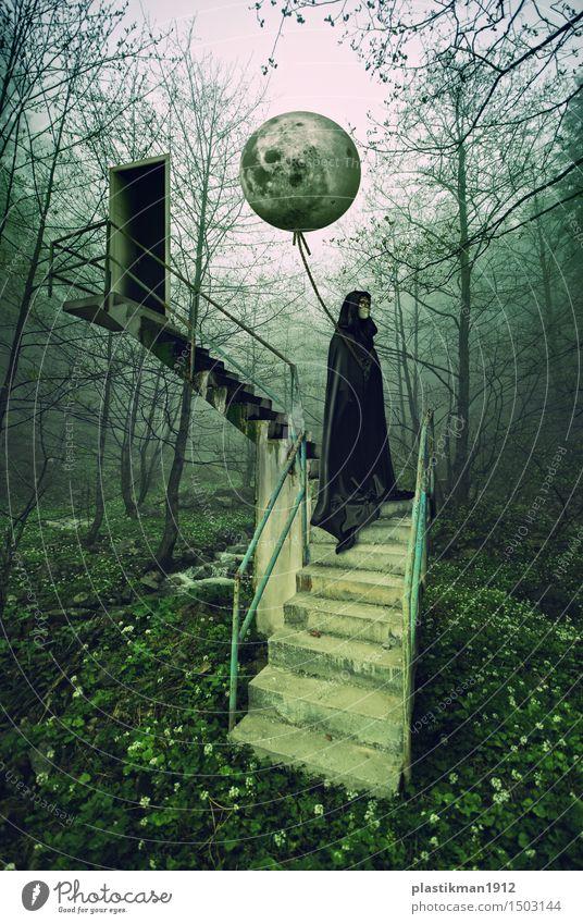 Mond Frau Erwachsene 1 Mensch Kraft Treppe Tür Luftballon Urwald Wald Baum Natur geheimnisvoll Phantasie Manipulation Digitalfotografie träumen schwarz Blume