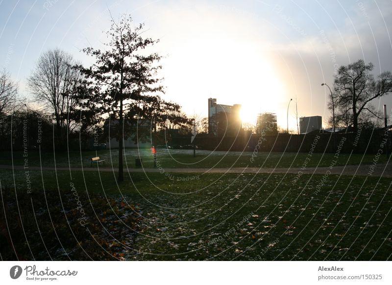 Planten und Bloomen Himmel Stadt grün schön Baum Sonne Wolken Winter Umwelt Garten Park frei Hochhaus ästhetisch Hamburg Hoffnung