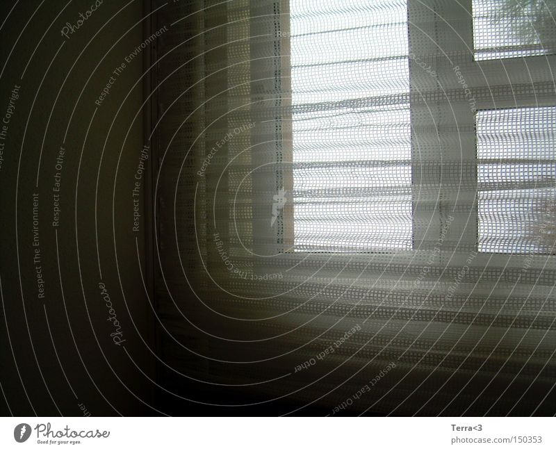 Schleierhaft / 20 ! Einsamkeit dunkel Fenster Häusliches Leben gruselig Vorhang Gardine Versteck spukhaft verborgen Handarbeit verhüllen Spuk häkeln gehäkelt