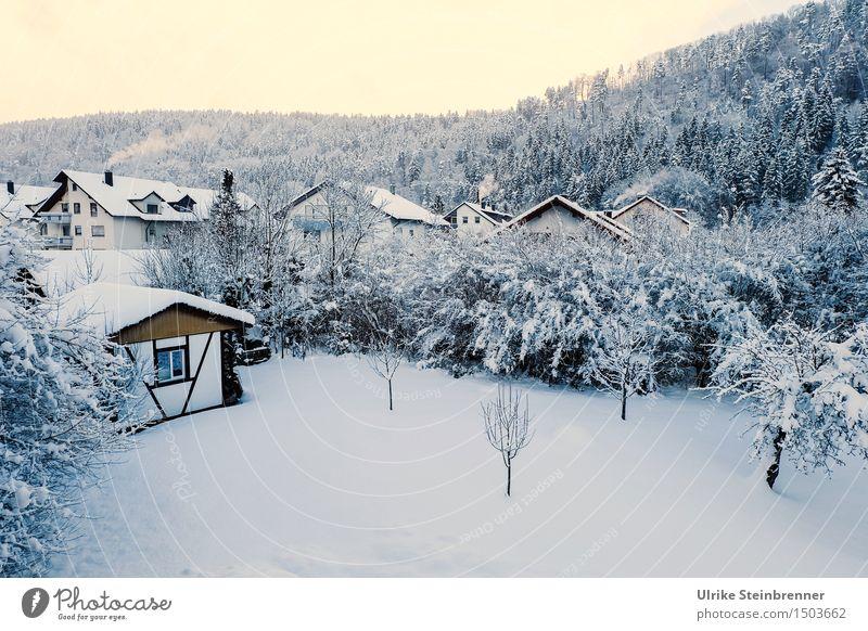 Neuschnee Himmel Natur weiß Baum ruhig Haus Winter Wald kalt Umwelt Wiese Schnee Garten leuchten Sträucher Hügel