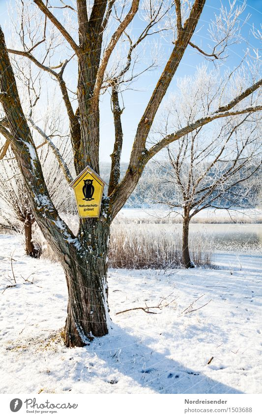 Naturschutzgebiet Landschaft Wolkenloser Himmel Winter Klima Schönes Wetter Eis Frost Schnee Baum Park See Zeichen Schilder & Markierungen Hinweisschild
