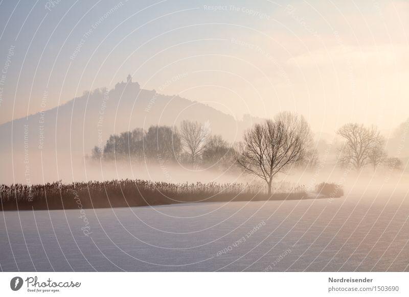 Kalte Tage Himmel Natur Baum Landschaft Einsamkeit ruhig Winter kalt Schnee See Park Nebel Eis Klima Romantik Hoffnung