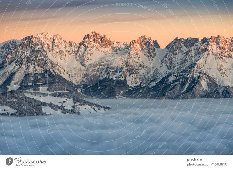 Der wilde Kaiser Natur Landschaft Sonnenaufgang Sonnenuntergang Winter Schönes Wetter Nebel Schnee Berge u. Gebirge Gipfel Schneebedeckte Gipfel ästhetisch