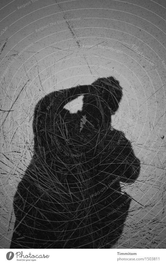 Beautiful shadow of a handsome old man. Heu Platz dunkel grau schwarz Schatten Silhouette Mensch Schwarzweißfoto Fotografieren Außenaufnahme Menschenleer Tag