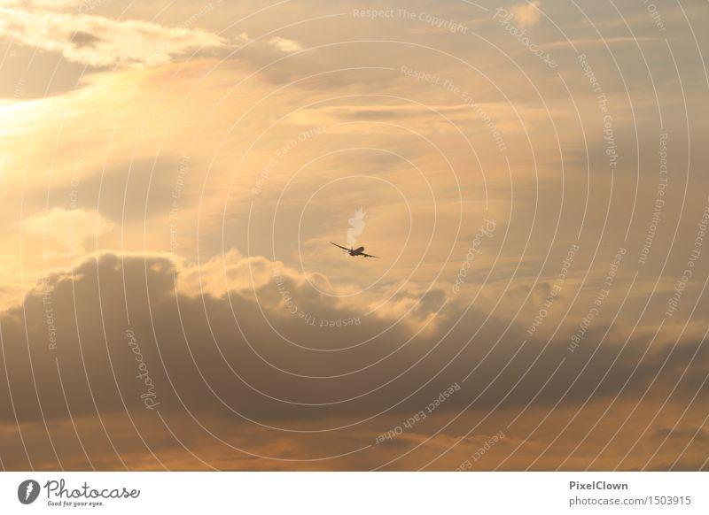 Ab in den Urlaub Himmel Ferien & Urlaub & Reisen schön Ferne Umwelt Gefühle fliegen Stimmung Erde Horizont orange Tourismus Luftverkehr ästhetisch