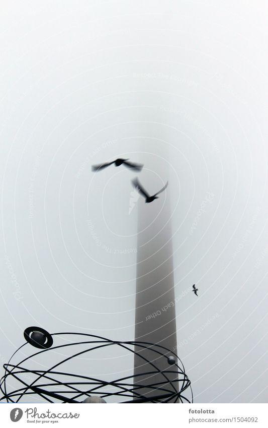 neblig l Nebel Berlin Berliner Fernsehturm Alexanderplatz Weltzeituhr Hauptstadt Menschenleer Turm Uhr Sehenswürdigkeit Vogel fliegen grau schwarz Dunst dunstig
