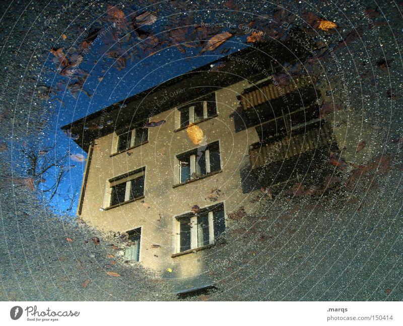 Tristesse kalt Haus nass Stadt Mieter Pfütze Herbst Balkon Fenster Häusliches Leben Wohnung Hinterhof Vermieter Reflexion & Spiegelung Wasser