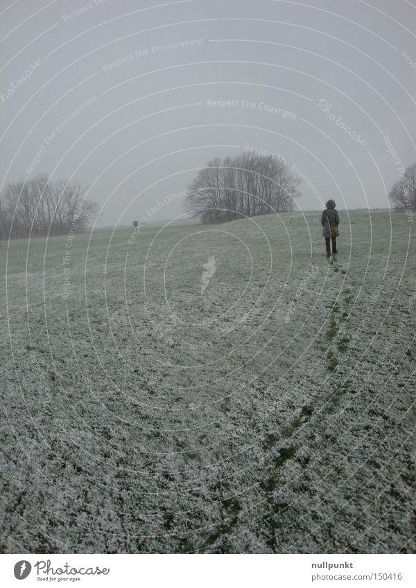 Spuren hinter mir Schnee weiß Fußspur Wege & Pfade hinten Wiese Baum Winter Einsamkeit Horizont Mantel kalt Frau Stapfen