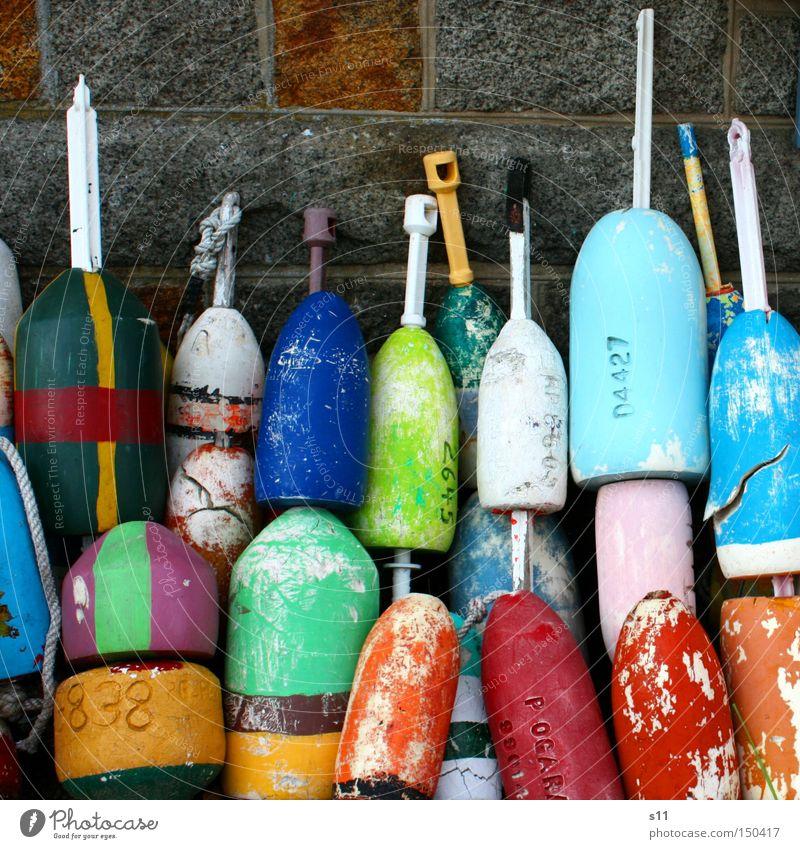 Bojen Wasser Meer Farbe Wasserfahrzeug mehrere Freizeit & Hobby mehrfarbig Hafen Fischer Ponton Fischereihafen