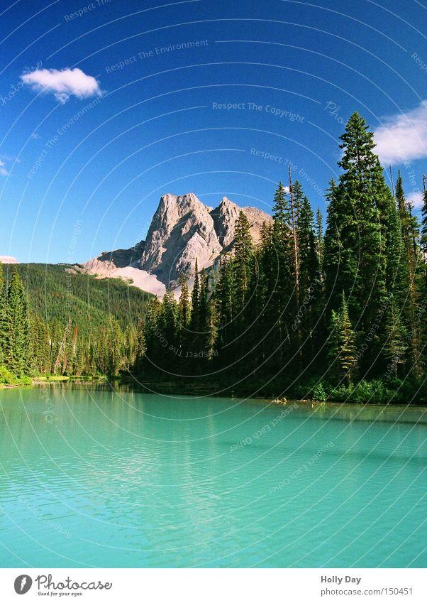 Der Smaragd-See Himmel Baum grün blau Wolken Berge u. Gebirge See türkis Kanada Edelstein Glätte Blauer Himmel Nationalpark Schmuck Rocky Mountains Smaragd