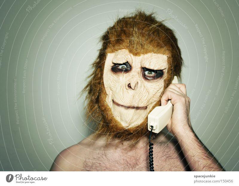Vienna calling Affen Tier verkleiden Maske Telefon sprechen Telefongespräch Telefonhörer Freude Affengesicht Rufnummer Karneval
