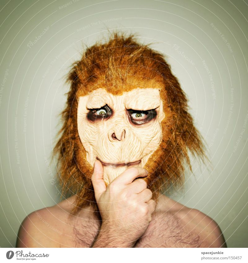 Selbstzweifel Freude Tier Denken lustig Maske Karneval skurril Affen Humor verkleiden Zweifel