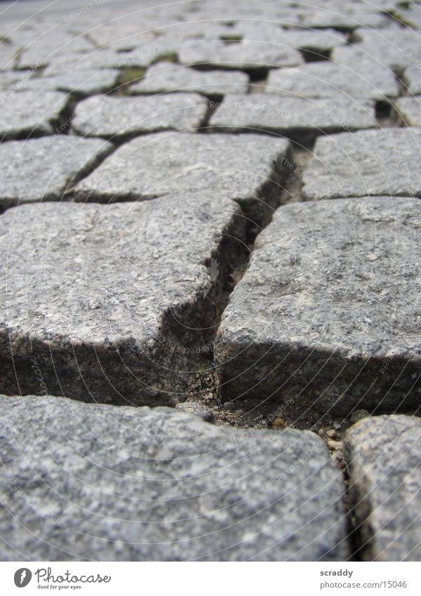 Kopfsteinpflaster Fuge grau Makroaufnahme Nahaufnahme Kopfsteinfplaster Stein Strukturen & Formen Pflastersteine