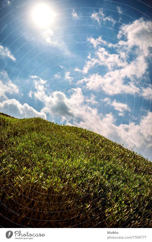 Wiese im Frühling Stil Design Erholung Sommer Sonne Natur Landschaft Himmel Wolken Gras Blatt Skyline Linie frei frisch Sauberkeit blau grün weiß Frieden Feld